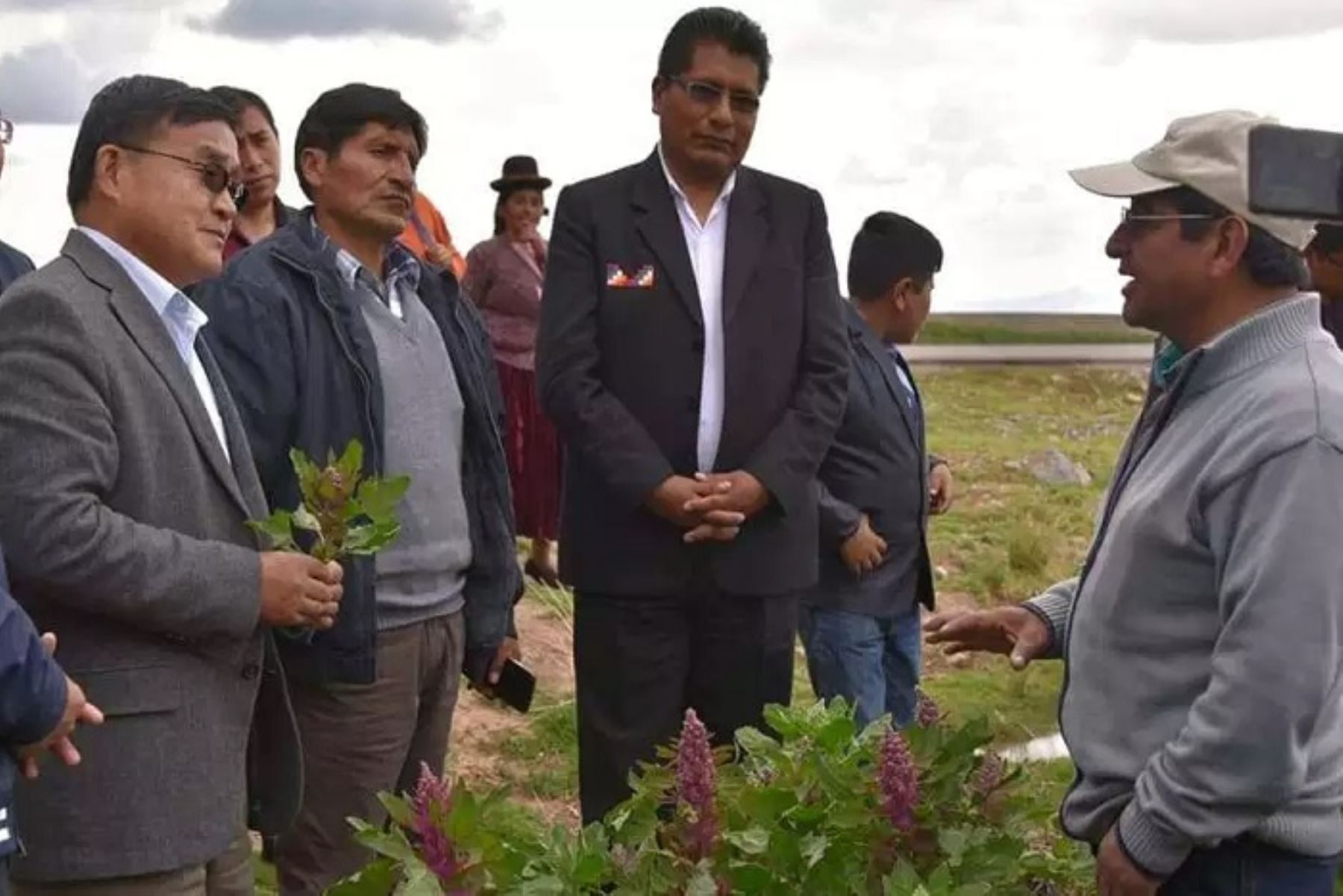 Chinese Amb visits Puno region to speed up quinoa export